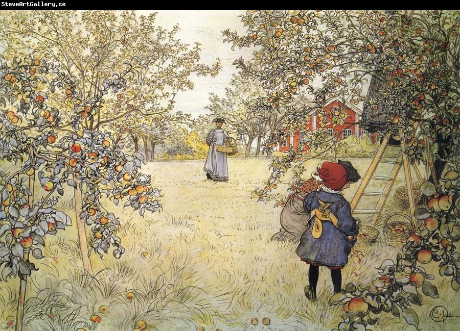 Carl Larsson Apple Harvest